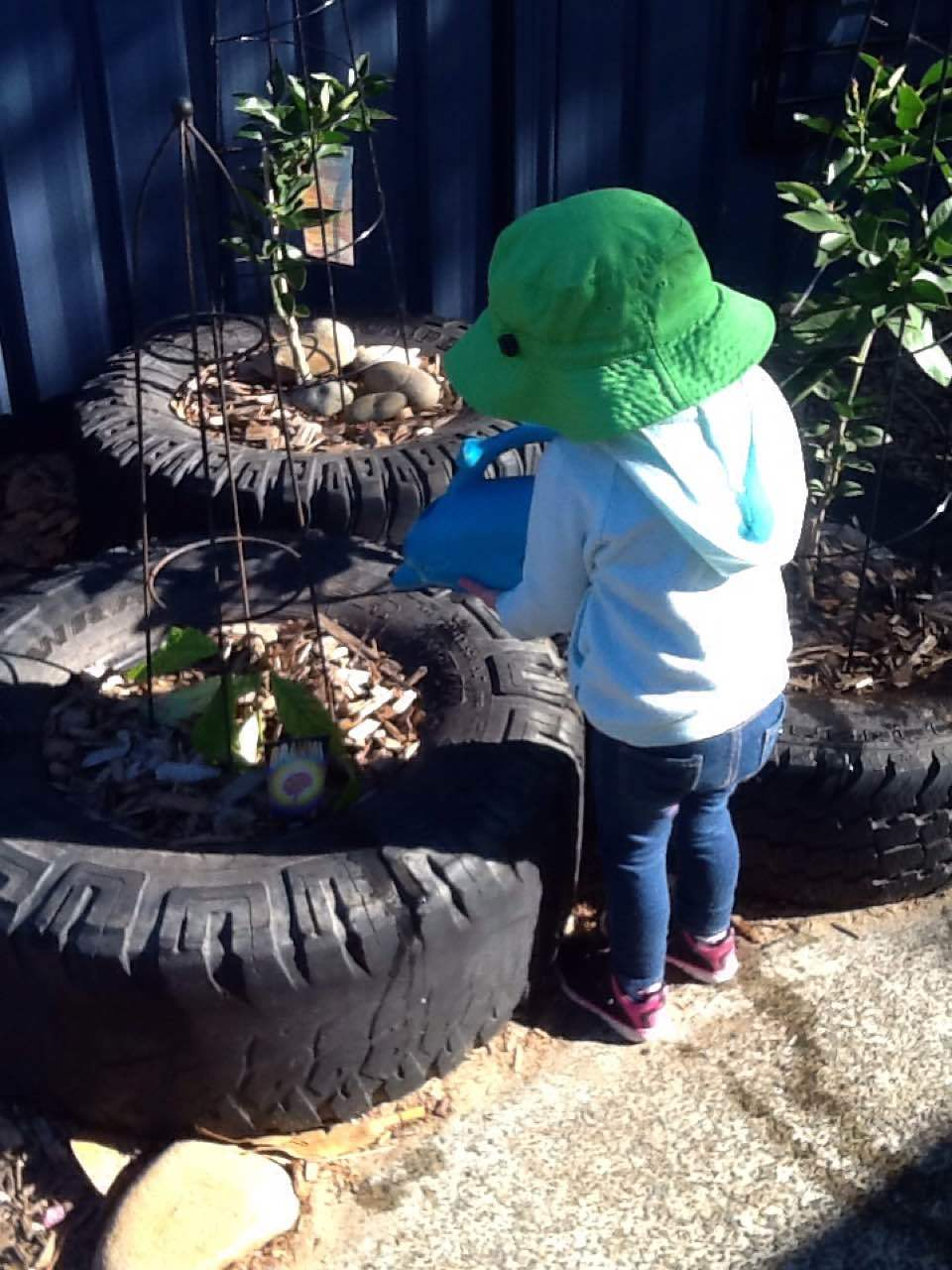 The children all help to look after our garden and our veggie garden. Darcy here is using one of the watering cans to take special care of the new plants that have gone in.